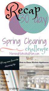 30 Day Spring Cleaning Challenge Recap Homemaking Bundle